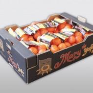 Mary mandarina malla 15x1