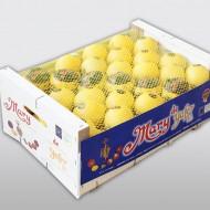 Mary limón madera 10k tapa