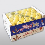 Mary limón madera 15k tapa