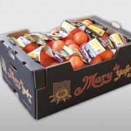 Mary naranja malla 20x1